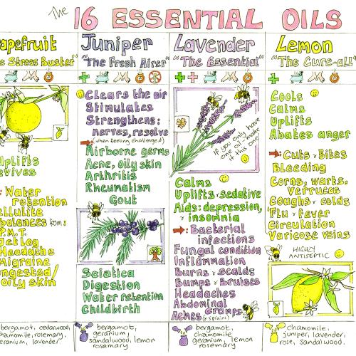 Essential Oils Chart