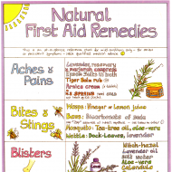 Natural First Aid Remedies Chart