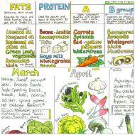 Twin pack: Vegan Nutrition Chart & Seasonal UK Fruit and Vegetable Chart